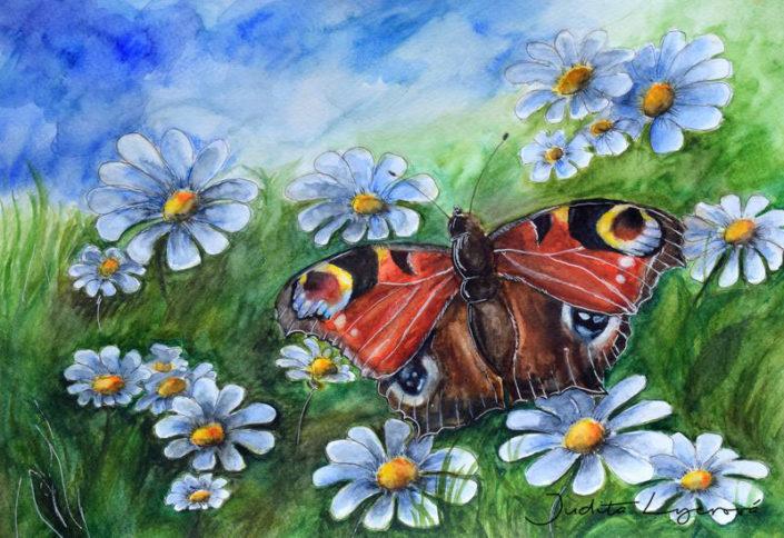 Návrh na pohlednici pro Maria's Mail, motýl, akvarel